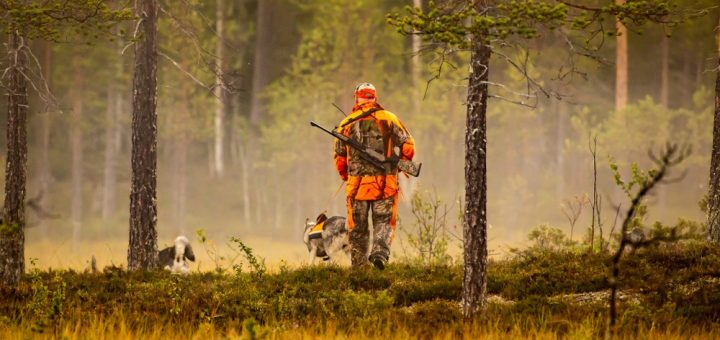 Why Hunting Can Be Good for the Environment
